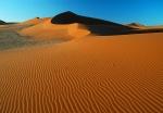 Antelope Tracks across Sand Dunes, Sossusvlei Area, Namib Desert, Namibia