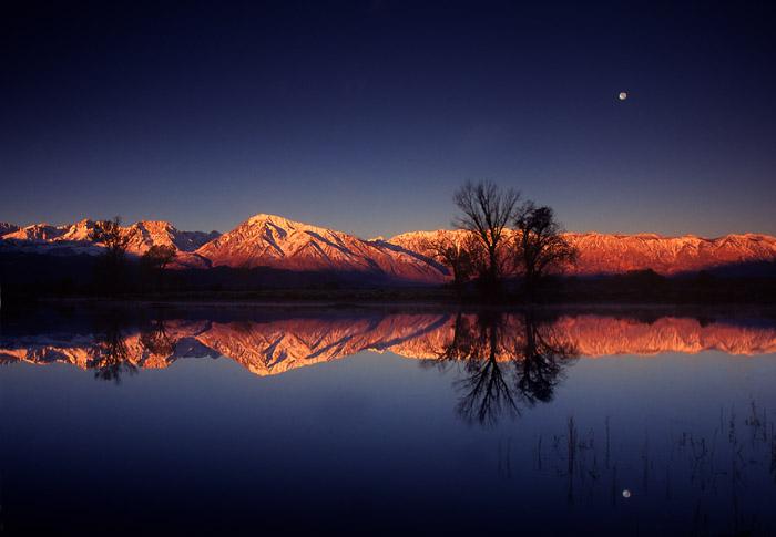 Farm pond at sunrise with moon, near Bishop, California
