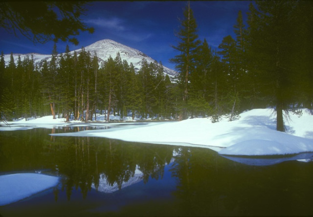 Mt Dana in snow, Yosemite National Park, California