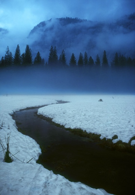 Yosemite Meadow in Snow, California