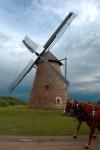 Windmill, Skanzen Village, Hungary
