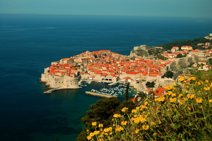 View of fortified city of Dubrovnic with wildflowers, Croatia
