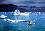 Iceburgs on Jokulsarlon Lagoon, Iceland