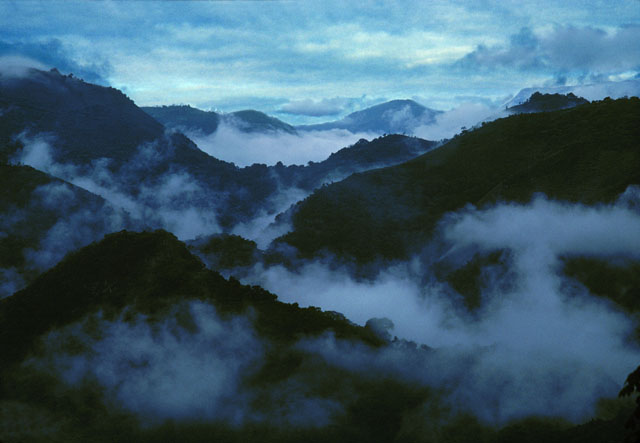 Mouintains and Mist, Tamaulipas, Mexico