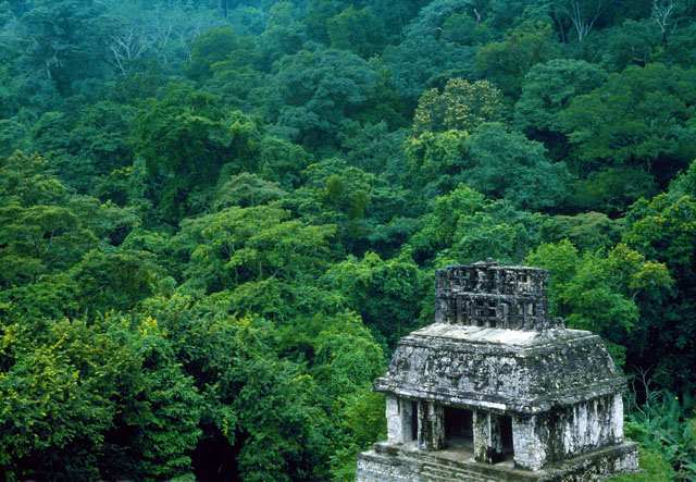 Ancient Mayan Temple of the Sun, Palenque, Mexico