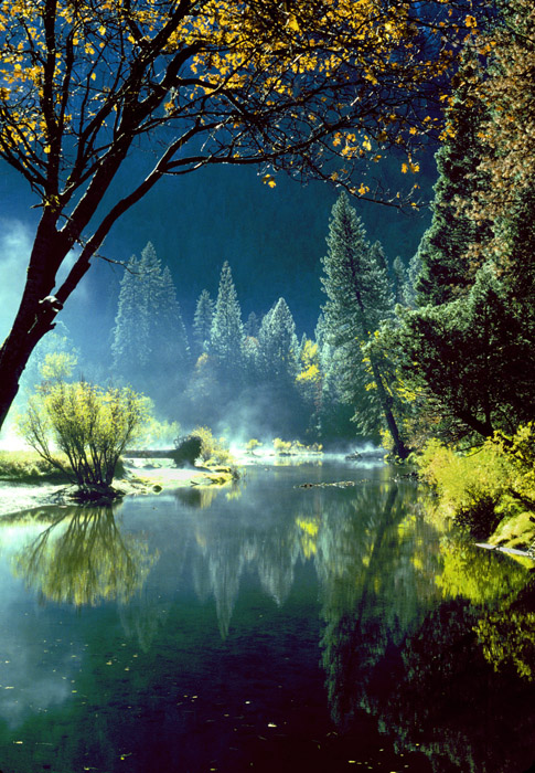 Fall colors, Merced River, Yosemite, California