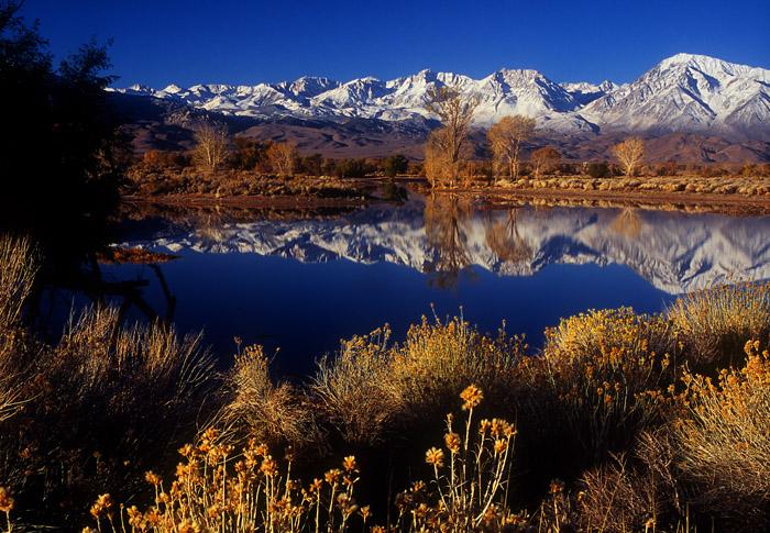 Winter morning, farm pond near Bishop, California