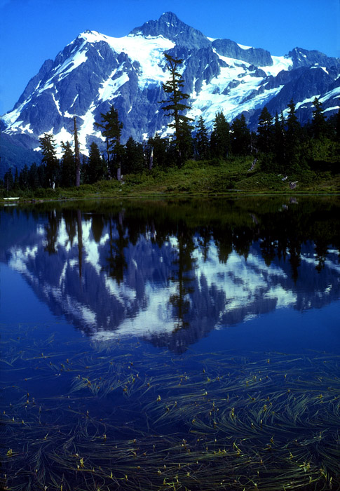 Mt Shuksan reflection, North Cascades, Washington