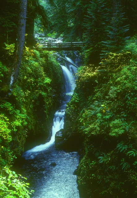Solduc Falls, Olympic National Park, Washington