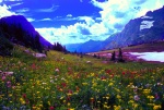 Hidden Lake Pass wildflowers, Glacier National Park, Montana
