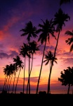 Sunset, Lovina Beach Bali, Indonesia