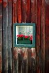Lace window with flowers, Hallstadt, Austria